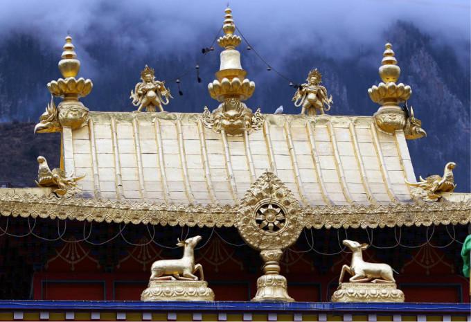 貌似大寺庙都有  小金佛塔,有很多个   这是白玉寺大活佛