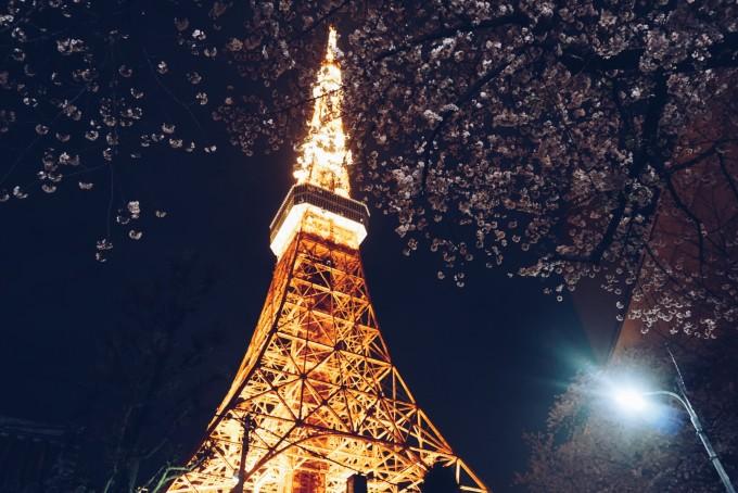 景物 埃菲尔铁塔与樱花