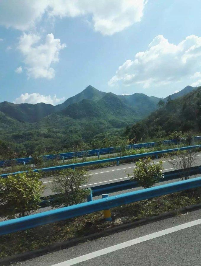 杭瑞高速路旁风景