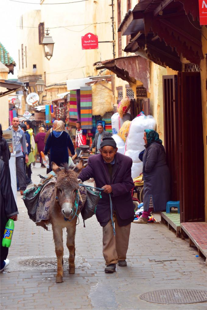 这里唯一的交通工具就是忠诚的驴子.图片