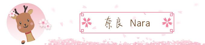 奈良看小鹿♪(^∇^*)